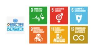 Objectifs développement Nations Unies